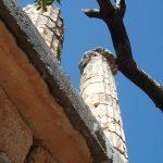 Delphi: More columns!