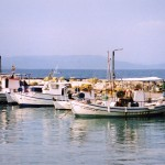 Aegina: Fishing boats at Souvala harbour