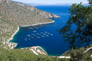A fish farm in the Peloponnese