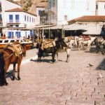 Hydra: Donkeys on the quay waiting their next load