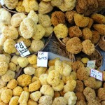 Aegina is an excellent place to shop for natural sponges