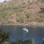 Amazon Creek: A yacht weighs anchor