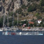 "Ciftlik: Whoops. Trip boat ""moored"" in the bay!"