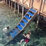 Asardibi Limani: Snorkeling off the restaurant jetty