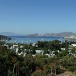 Bitez: The bay